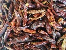 Dry hot chillis background. stock image