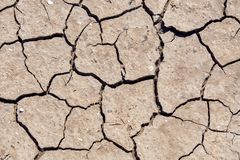 Dry and hot summers, cracked soil with some small, green plants. The texture of the earth during drought Stock Photo