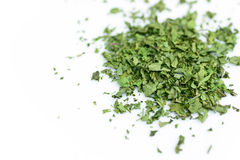 Dry isolated coriander Stock Images