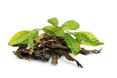 Dry  jasmin tea leaves. Royalty Free Stock Photos