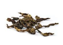 Dry  jasmin tea leaves. Stock Photo