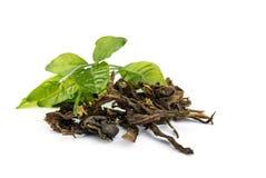 Dry  jasmin tea leaves. Royalty Free Stock Image