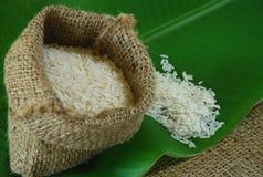Dry jasmine rice Royalty Free Stock Images