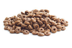 Dry kibble dog food. Stock Images
