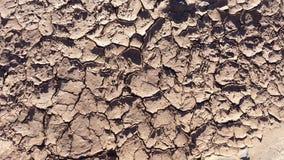 Dry knäckte jordtextur för videospel Royaltyfri Bild