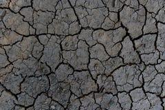 Dry knäckte jordutkastet Royaltyfria Bilder