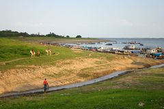 Dry lake. In the Amazon river in summer - Brazil royalty free stock image
