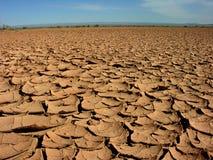 Dry lake. Cracked ground in the Gobi desert royalty free stock photo