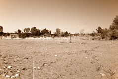 Dry lake bed Stock Photo