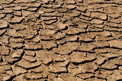 Dry lake bed. Dry cracked lake bed in Macedonia Stock Photography