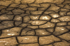 Dry lake bed. Due to the severe drought, many lakes are drying up completely Royalty Free Stock Photos