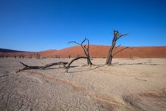 The dry lake in the desert, Sossusvlei,  Namibia, Stock Photography