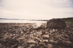 Dry lake due to drought. Stock Images