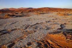 A dry lake Sossusvlei, Namibia, Africa Stock Image
