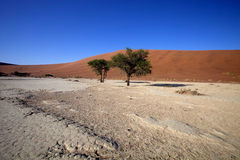 A dry lake Sossusvlei, Namibia, Africa Stock Photos