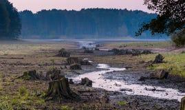 Dry lake Stock Photography