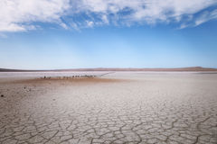 Dry lake under blue sky Royalty Free Stock Photos