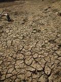 Dry Land. In Shing Mun Reservoir Tsuen Wan Hong Kong Royalty Free Stock Photography