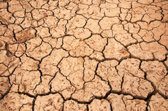 Dry land Stock Images