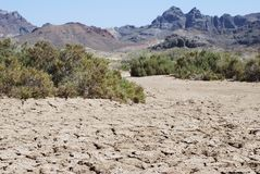 The Dry Land. The land became extremely dry in El Tecolote area, Mexico Stock Photography