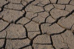 Dry land. In Gundipet lake the South Indian state Andhra Pradesh Royalty Free Stock Images