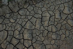 Dry land. Cracked dry  clay soil background Stock Photography