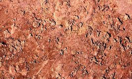 Dry land. Dry and cracked soil or land Royalty Free Stock Photography