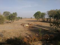 dry land στοκ εικόνα με δικαίωμα ελεύθερης χρήσης