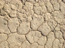 Dry land. Dry lakebed photographed in the desert in Nevada. The land is cracked because of draught Stock Photos