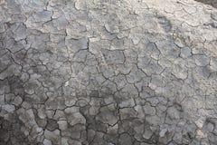 Dry land. Stock Image