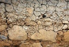Dry land background royalty free stock image