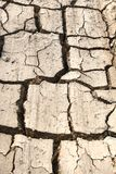 Dry Land with Cracked. Close Up Royalty Free Stock Images