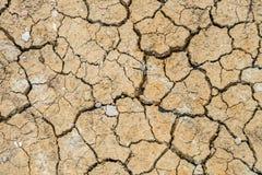 Dry land. Cracked ground background. Royalty Free Stock Photo