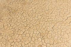 Dry land. Cracked ground background. stock photos