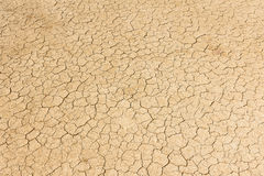 Dry land. Cracked ground background. stock images