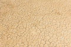 Dry land. Cracked ground background. stock image