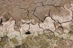 Dry land, Cracked ground. Royalty Free Stock Photo