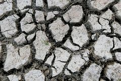Dry land and cracked ground. Pattern and texture soil.  stock image