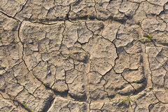 Dry land, cracked ground, without water. Stock Photography