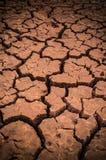 Dry Stock Photos