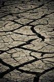 Dry Stock Image