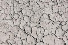 Dry land in the cracks Stock Photography