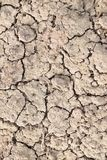 Dry land, dry scaly ground Royalty Free Stock Images