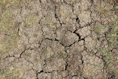 Dry land earth Royalty Free Stock Photo
