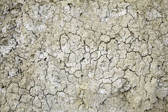 Dry land in a field Stock Images