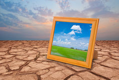 Dry land and green grass Stock Images