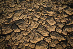 Dry land. Dry soil texture on the ground Stock Image