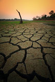 Dry land. Dry soil texture on the ground Stock Photography
