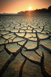Dry land. Dry soil texture on the ground Royalty Free Stock Photography