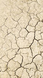 Dry land texture royalty free stock photography